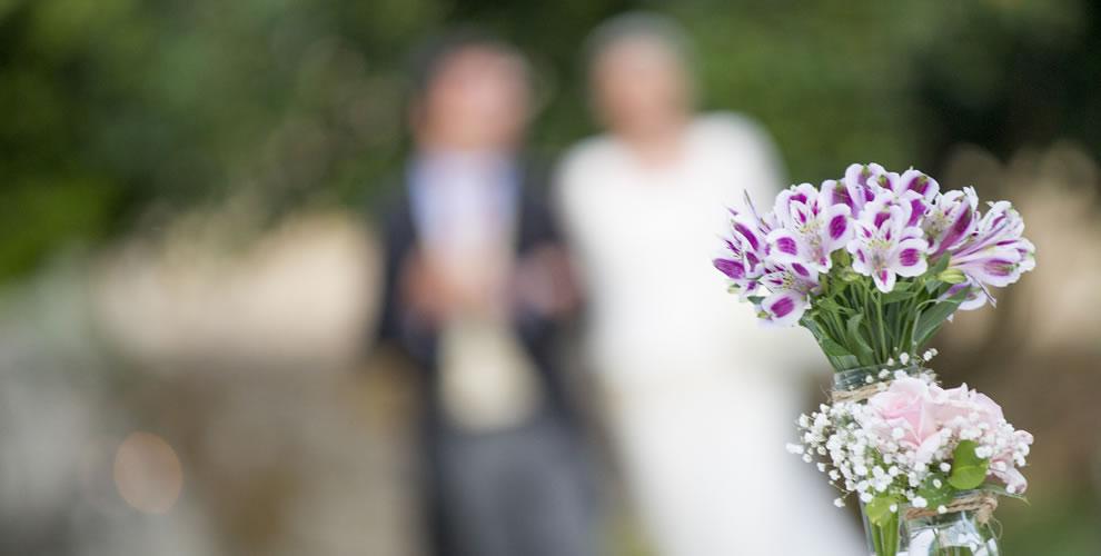 bodas31